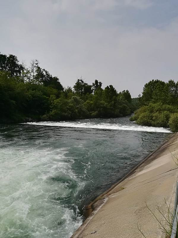 Parco del Ticino 027